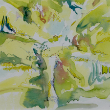 c-somerville_blossom-2020-watercolour-17-x2022csw_210218_2858