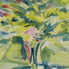 catharine-somerville_summer-colours-2020-17-x20-watercolour-csw_210218_2862-copy