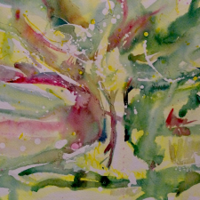 c-somerville_cherry-blossom-2021-watercolour-on-rag-19-x25-x1-1222-img_2349