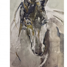 Valegro,2018-19-x-16-watercolour-copy