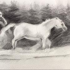 Winter ponies