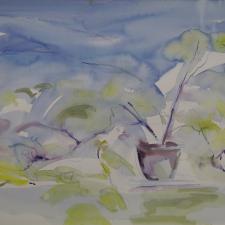 pot-jardinier-2016-watercolour