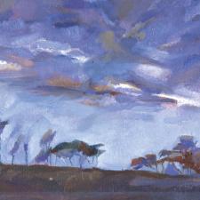 November Sky 1996