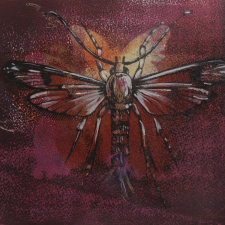 magic-fly-2013-mixed-media-8-h-x-10-w