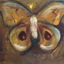 Shaking moth